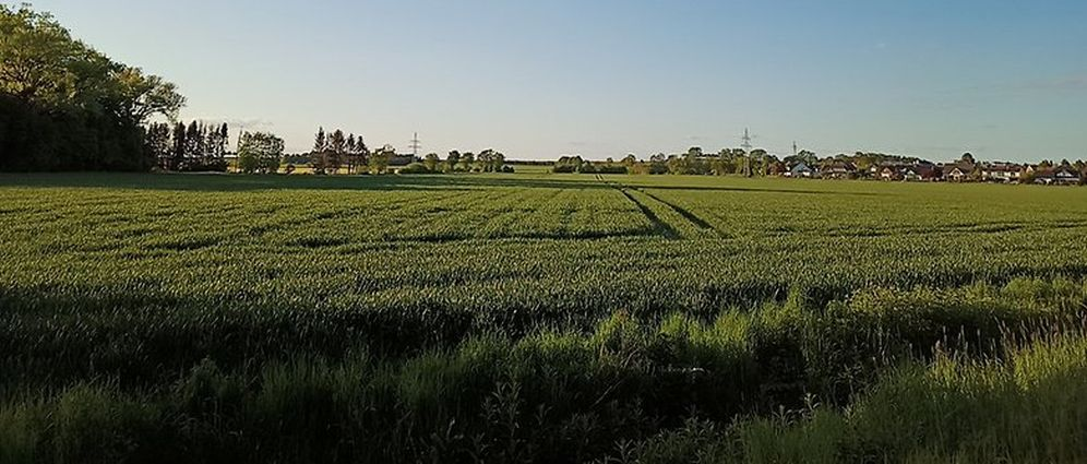 Панорама Realme 6